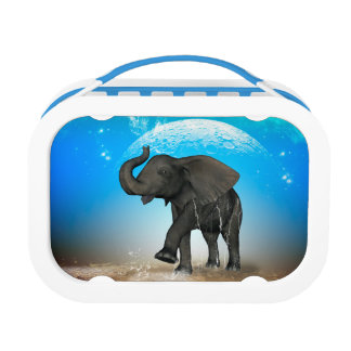 Cute baby elephant lunch box