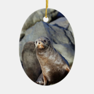 Cute baby fur seal Cape Palliser Ceramic Oval Decoration