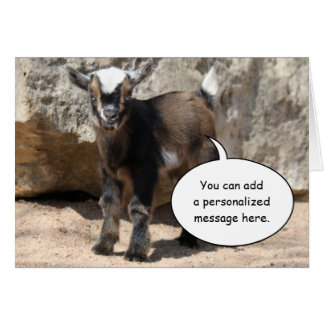 Cute Baby Goat Greeting Card