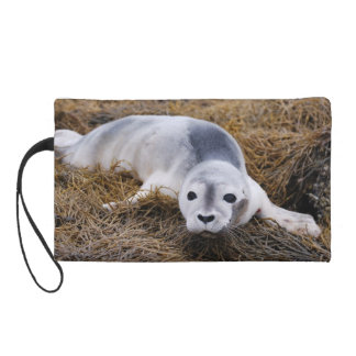 Cute Baby Harbor Seal Wristlet Clutch