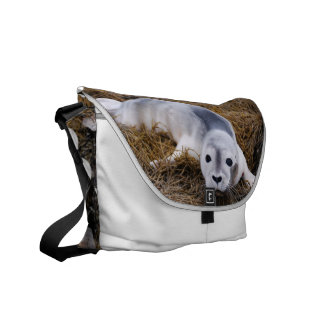 Cute Baby Harbor Seal Commuter Bags