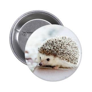 Cute Baby Hedgehog 6 Cm Round Badge