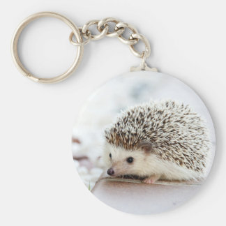 Cute Baby Hedgehog Basic Round Button Key Ring