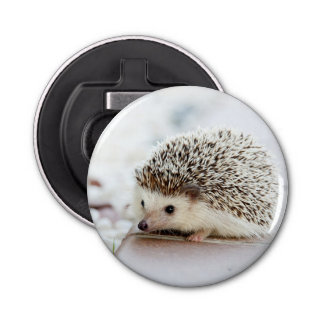 Cute Baby Hedgehog Bottle Opener
