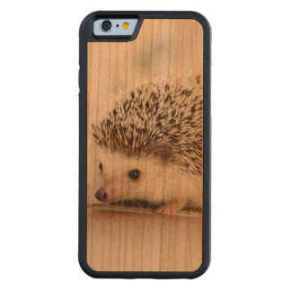 Cute Baby Hedgehog Carved Cherry iPhone 6 Bumper Case