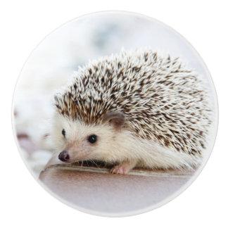 Cute Baby Hedgehog Ceramic Knob