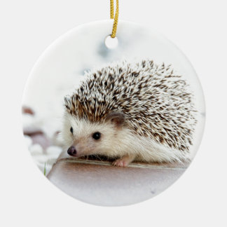 Cute Baby Hedgehog Christmas Ornament