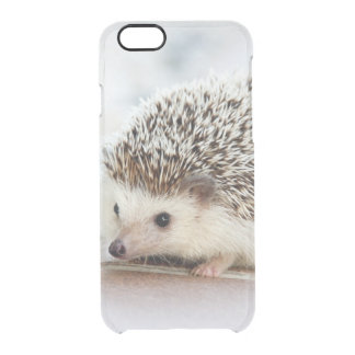 Cute Baby Hedgehog Clear iPhone 6/6S Case