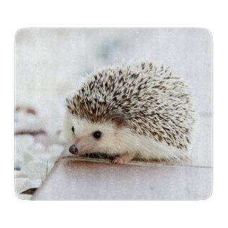 Cute Baby Hedgehog Cutting Board