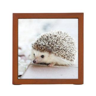 Cute Baby Hedgehog Desk Organiser