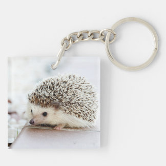 Cute Baby Hedgehog Key Ring
