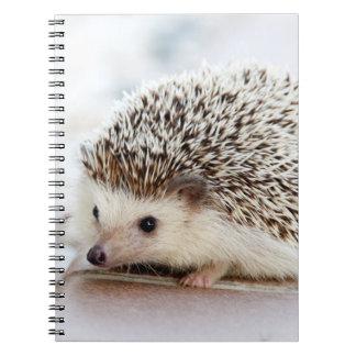 Cute Baby Hedgehog Notebook