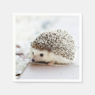Cute Baby Hedgehog Paper Napkins