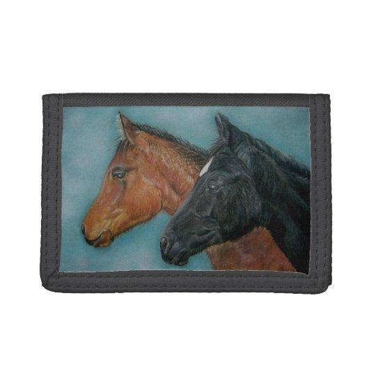 cute baby horses black foal chestnut foal portrait