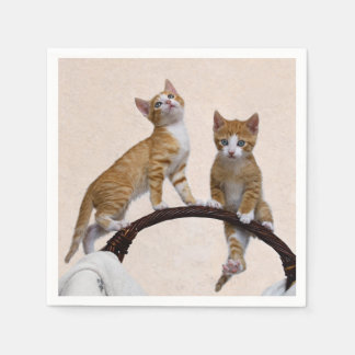 Cute Baby Kitten Funny Play Gym Photo Cat Lover / Disposable Napkin