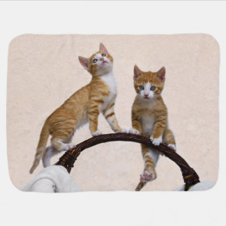 Cute Baby Kitten Funny Play Gym Photo Cat Lover - Receiving Blanket