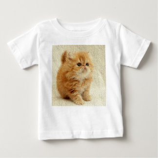 Cute baby kitten t-shirt