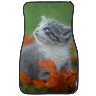Cute Baby Kittens Playing Outdoors in the Grass Car Mat