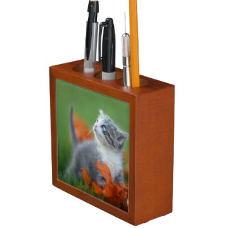 Cute Baby Kittens Playing Outdoors in the Grass Desk Organiser