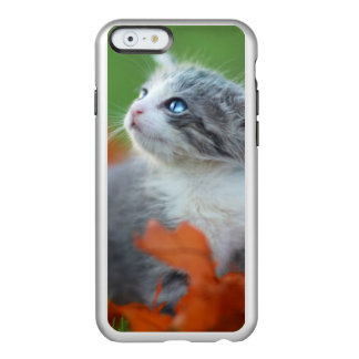 Cute Baby Kittens Playing Outdoors in the Grass Incipio Feather® Shine iPhone 6 Case