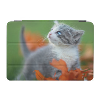 Cute Baby Kittens Playing Outdoors in the Grass iPad Mini Cover