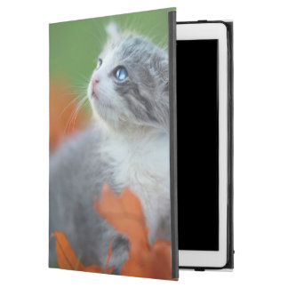 """Cute Baby Kittens Playing Outdoors in the Grass iPad Pro 12.9"""" Case"""