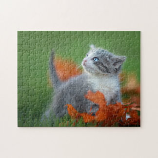 Cute Baby Kittens Playing Outdoors in the Grass Puzzle