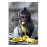 Cute baby macaque monkey enjoying banana greeting card