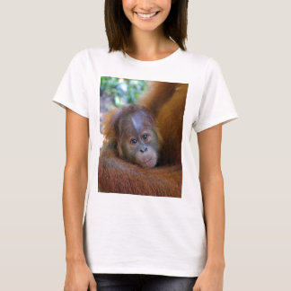 Cute baby Orangutan T-Shirt