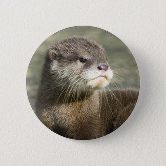 Cute Baby Otter 6 Cm Round Badge