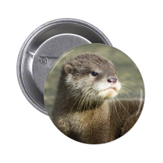 Cute Baby Otter 6 Cm Round Badge
