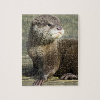 Cute Baby Otter Jigsaw Puzzle