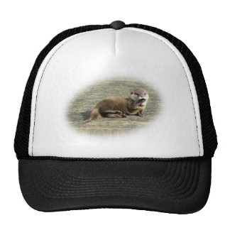 Cute Baby Otter Yawning Cap