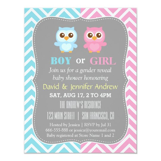 Cute Baby Owl Theme Chevron Gender Reveal Party