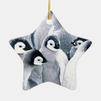 cute baby penguin penguins design christmas ornament