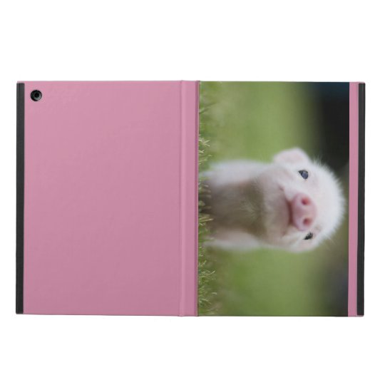 Cute baby pig ipad case
