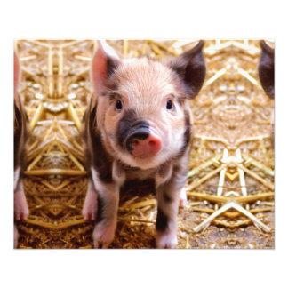 Cute Baby Piglet Farm Animals Babies 11.5 Cm X 14 Cm Flyer