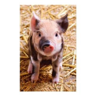 Cute Baby Piglet Farm Animals Babies 14 Cm X 21.5 Cm Flyer