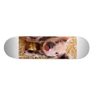 Cute Baby Piglet Farm Animals Babies 20.6 Cm Skateboard Deck