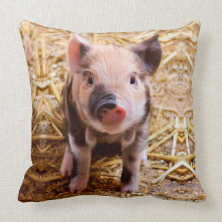 Cute Baby Piglet Farm Animals Babies Cushion