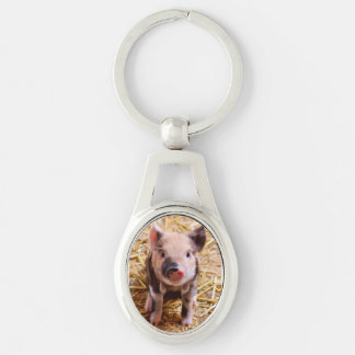 Cute Baby Piglet Farm Animals Babies Silver-Colored Oval Key Ring