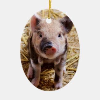 Cute Baby Piglet Farm Animals Barnyard Babies Christmas Ornament