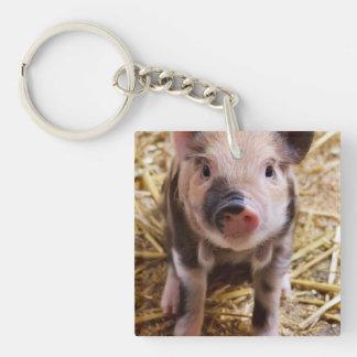 Cute Baby Piglet Farm Animals Barnyard Babies Acrylic Key Chains
