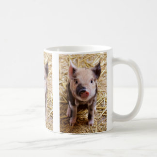 Cute Baby Piglet Farm Animals Barnyard Babies Coffee Mugs