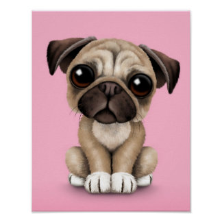 Cute Baby Pug Puppy Dog on Pink Poster