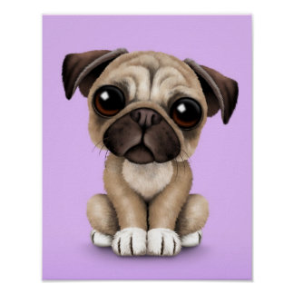 Cute Baby Pug Puppy Dog on Purple Poster