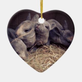 Cute baby rabbit photo design ceramic heart decoration
