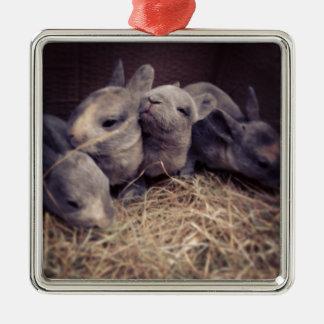 Cute baby rabbit photo design Silver-Colored square decoration
