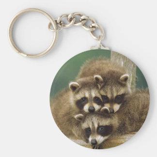 Cute Baby Raccoon Key Ring