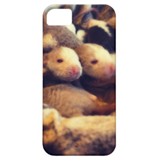 Cute baby rat photo design iPhone 5 covers
